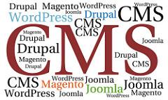 ¿Que es un CMS y para que sirve?